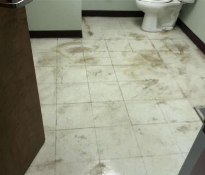bathroom floor covered in water and sewage