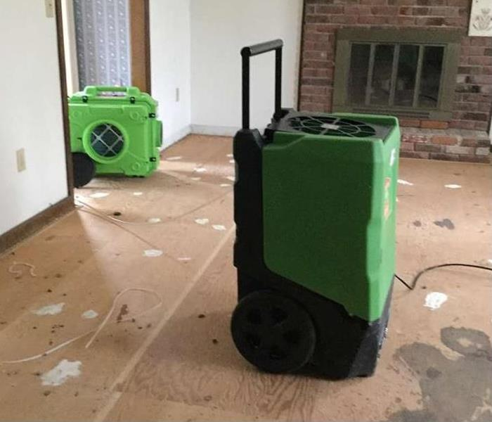 Mold Remediation in East Haven After