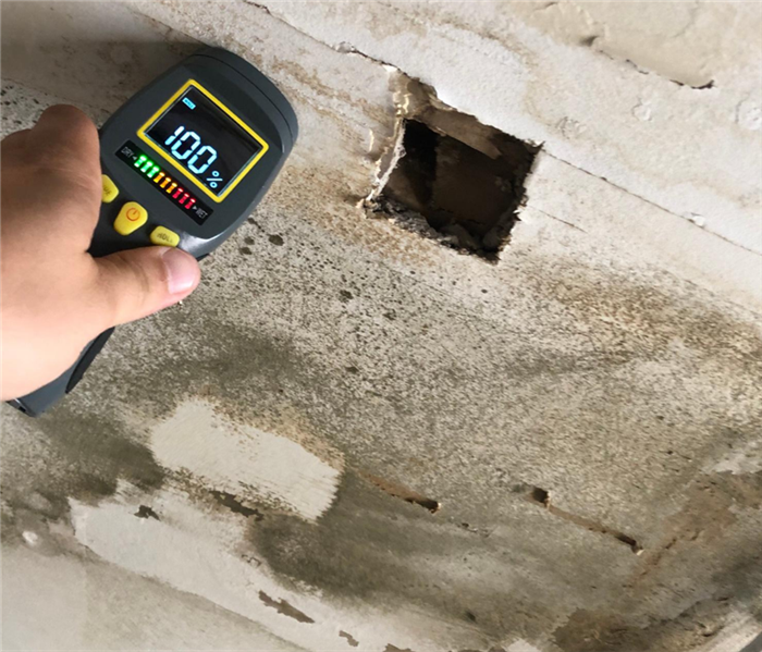 moisture meter being used on a water damaged ceiling with mold growth