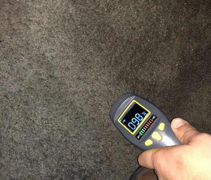 moisture detector finding 98% moisture in a carpet