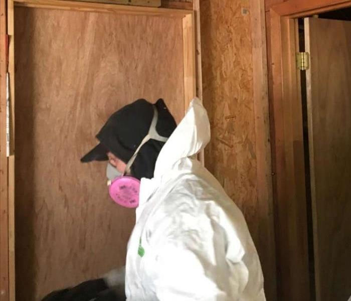 Mold Remediation Mold Preventing in Basement