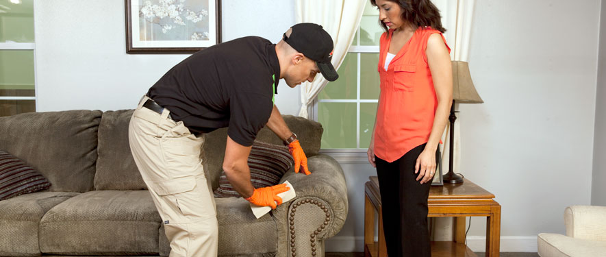 Branford, CT carpet upholstery cleaning