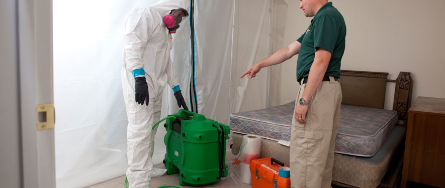 Branford, CT mold removal process